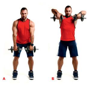 тяга гантелей к подбородку для плечевого пояса