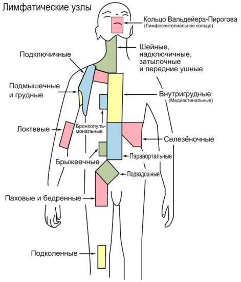 как выполняется лимфодренажный массаж