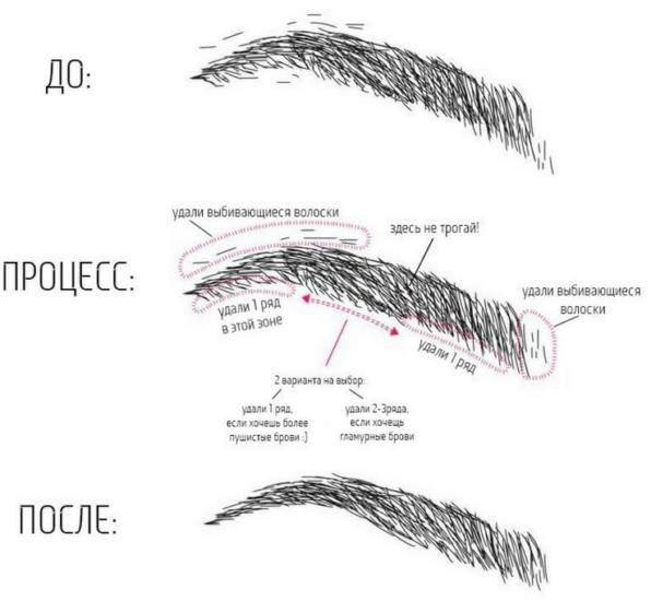 коррекция формы лица косметикой