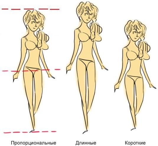 правильные и неправильные пропорции ног