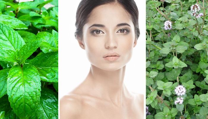Маски для лица с мятой: освежающие рецепты для вашей красоты