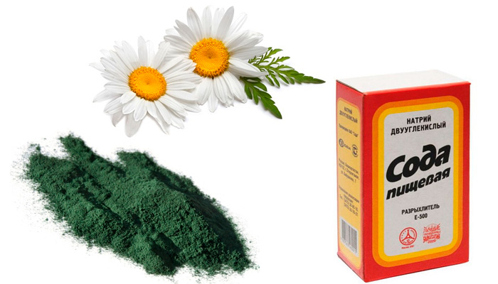 Маска со спирулиной для кожи лица: особенности применения в домашних условиях
