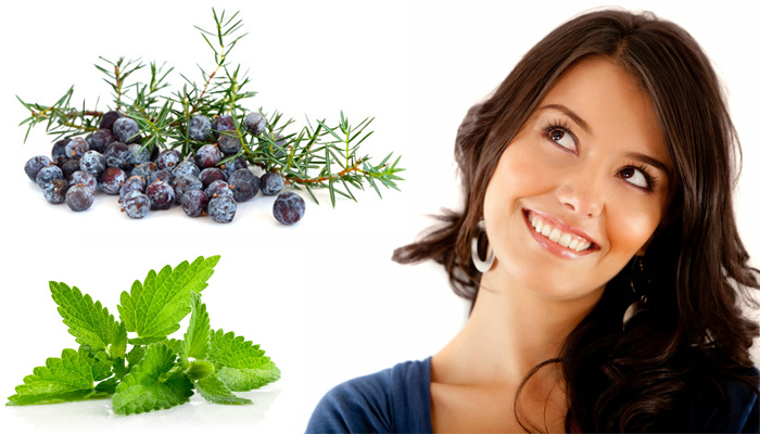 Применение и полезные свойства масла можжевельника для лица