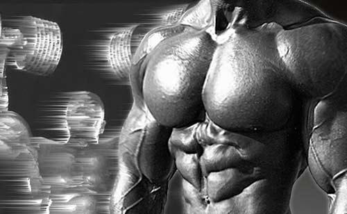 Программа тренировок грудных мышц на массу