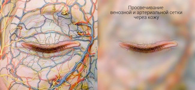 филлеры под глаза