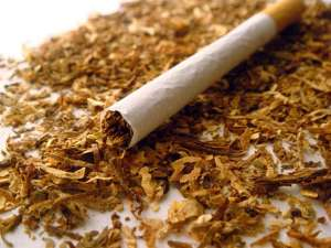 табак в сигаретах