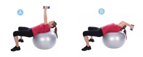 упражнение для грудной мышцы