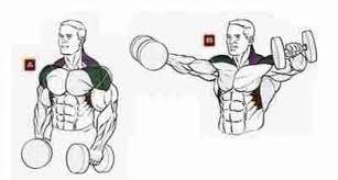 махи гантелями в стороны для мышц плечевого пояса