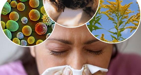 аллергия-отек-глаза
