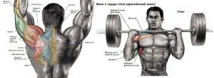 армейский жим для мышц грудной клетки