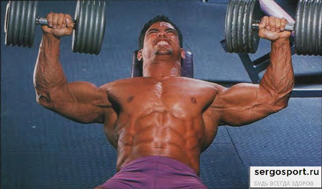 программа тренировок на силу грудных мышц