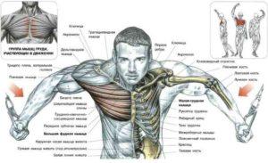 кроссовер для мышц грудной клетки