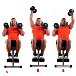 поочередный жим гантелей на развитие мышц переднего пучка плеч