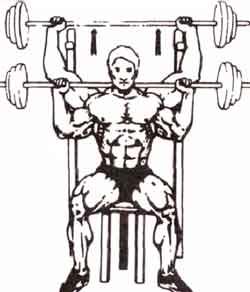 жим штанги из-зи головы на плечевые мышцы