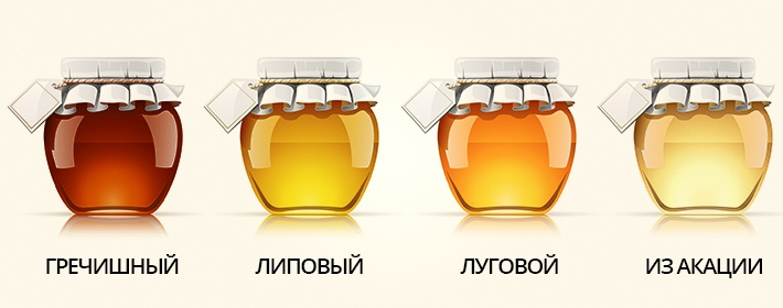 разновидность меда
